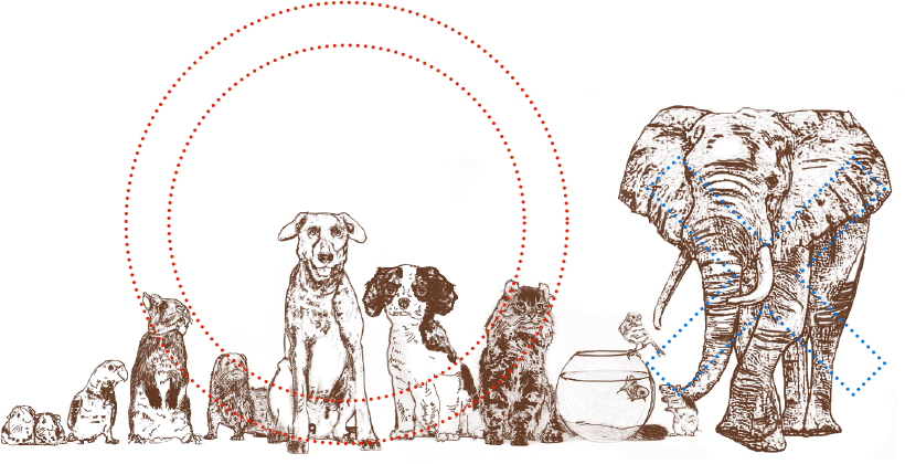 area_04_img